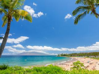 Maui - 5 minutes walk to the beach up to 6 people - Kihei vacation rentals