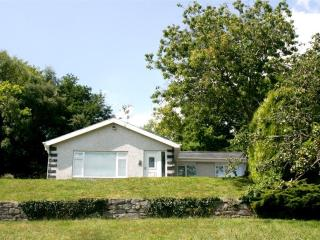 Comfortable Cottage with Internet Access and Television - Llanelltyd vacation rentals