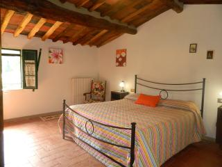 Typical Tuscan farmhouse Lucca, Pisa and Florence - Pescia vacation rentals