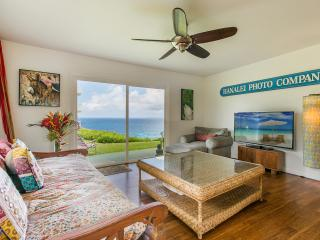 Love Shack. Bali, Modern, Oceanfront. Couples Only - Princeville vacation rentals