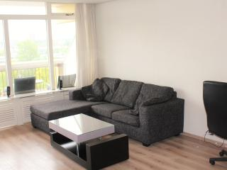 Fully furnished Studio apartment - Leiden vacation rentals