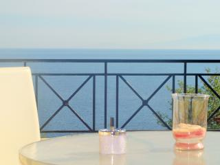 Spacious 4 bedroom Villa in Possidi - Possidi vacation rentals