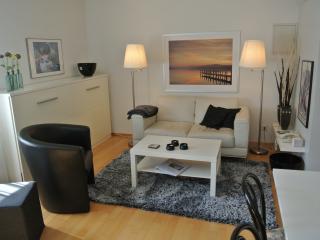 Appartement 2 im Landhaus Edelmann - Mullheim vacation rentals