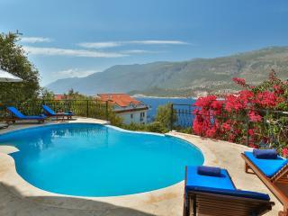 Villa Meena, large luxury 4 bedroom villa - Kas vacation rentals