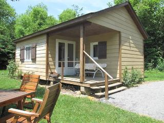 Perfect Chalet with Swing Set and Television - Lacaune vacation rentals