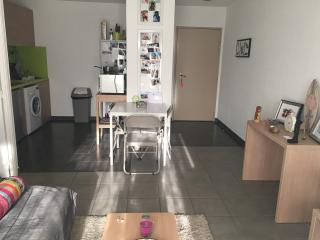 Nice Condo with Internet Access and Wireless Internet - Castelnau-le-Lez vacation rentals