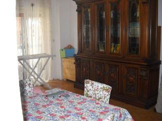 Ampio appartamento con grande giardino vicino mare - Palo Laziale vacation rentals