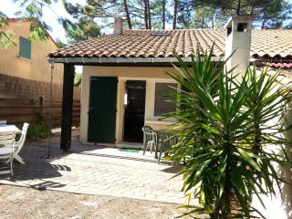 1 bedroom House with Television in Lacanau-Ocean - Lacanau-Ocean vacation rentals