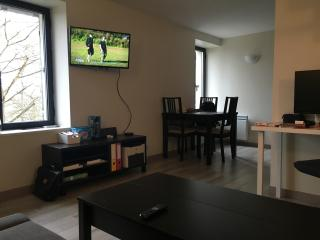 Nice Condo with Internet Access and Satellite Or Cable TV - Jouy en Josas vacation rentals