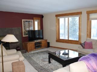 1250 Willow Grove - Silverthorne - Silverthorne vacation rentals