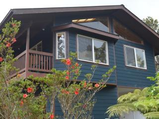 Spectacular House in the Woods - Volcano vacation rentals