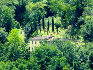 Il Maniero - Heaven in the Tuscan hills,  Lucca - Lanciole vacation rentals