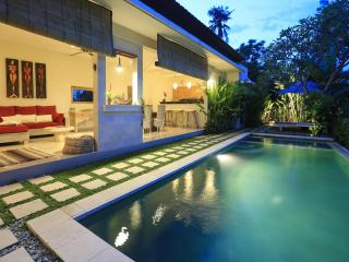 Peaceful villa w/ rice fields view, 10' to beach ! - Canggu vacation rentals