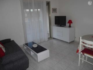 Cannes Center Appatment - Cannes vacation rentals