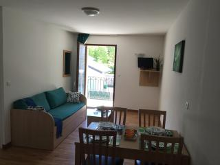 1 bedroom Apartment with Internet Access in Bagneres-de-Luchon - Bagneres-de-Luchon vacation rentals