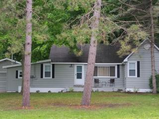 Great Lake Bellaire Location & Minutes from Torch! - Bellaire vacation rentals