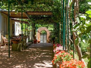 Perfect Bed and Breakfast with Internet Access and A/C - Capri vacation rentals
