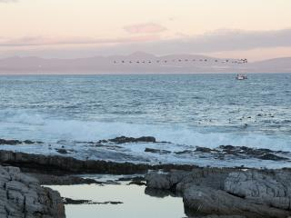 Hermanus Whale View Self Catering - Hermanus vacation rentals