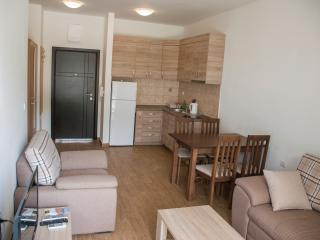Apartments Welcome 30 - Petrovac vacation rentals