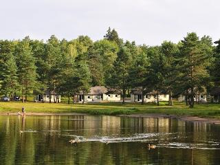 Cottage - Lodge Lac de Feyt -Vallée de la Dordogne - Argentat sur Dordogne vacation rentals