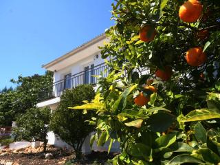 Nice Villa with Washing Machine and Mountain Views - Tarragona vacation rentals