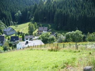 Romantic 1 bedroom House in Schmallenberg - Schmallenberg vacation rentals