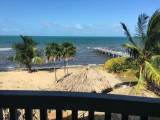 Beachfront, pool, private house two bedrooms - Hopkins vacation rentals