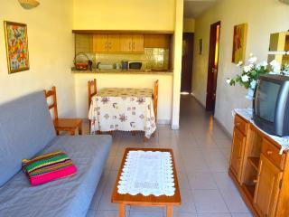 Nice Apartment close to beach - Playa de Fanabe vacation rentals