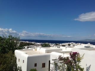 Apartment in a complex w/swimming pool in mykonos town - Mykonos Town vacation rentals