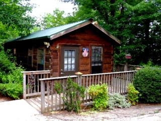 Gaestehaus Salzburg, Bluebird Cabin - Lake Lure vacation rentals