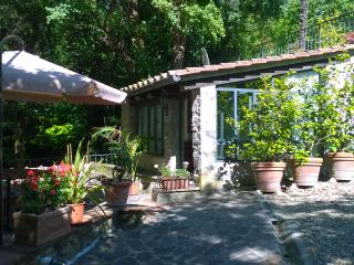 1 bedroom House with Parking in Fiesole - Fiesole vacation rentals