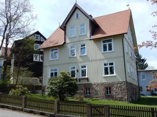 Drei Harzer Berge: verblijf op hoog niveau - Braunlage vacation rentals
