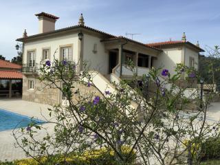 Sleeps 10 - Luxury Villa near Ponte do Lima - Ponte do Lima vacation rentals