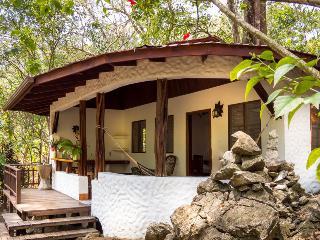 Encanta La  Vida Beach Jungle Lodge - Cabo Matapalo vacation rentals