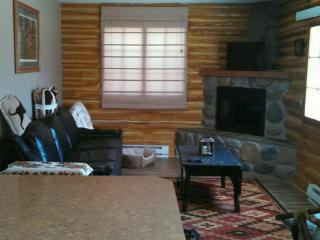 Nice 1 bedroom House in Grayling - Grayling vacation rentals