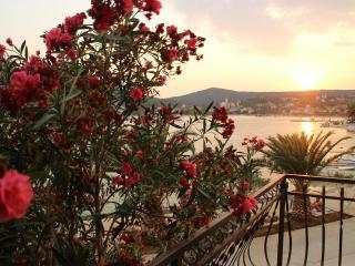 1 bedroom Condo with Internet Access in Vinisce - Vinisce vacation rentals