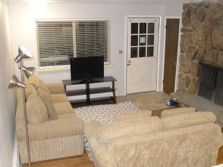 Newly remodeled Winter Park condo - Winter Park vacation rentals