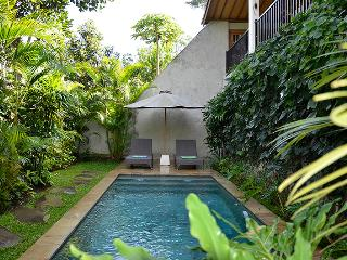 Villa Nangka - Private, tranquil, glorious views - Ubud vacation rentals