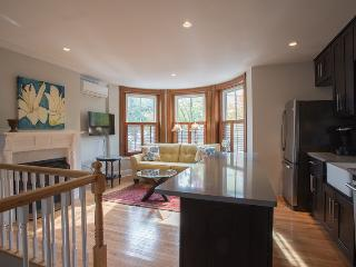 Spacious 2b/2b, two levels, high end finishes, lux - Somerville vacation rentals