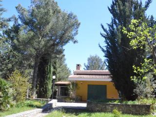 Andria Trani Castel del Monte Murgia National Park - Castel del Monte vacation rentals