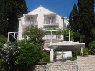 Apartment Lia Mlini A1 Seaview - Mlini vacation rentals