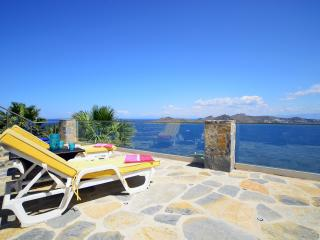Aegean 220 Luxury Villa - Yalikavak vacation rentals