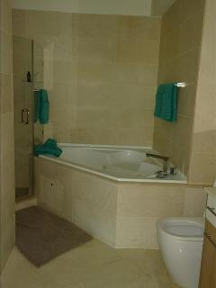 2 bedroom Apartment with Internet Access in Panama - Panama vacation rentals