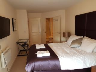 Beautiful apartment 2 min from Slough Station - Slough vacation rentals