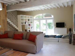 Bright House with Internet Access and Wireless Internet - Celles-sur-Ource vacation rentals