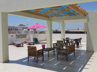 Palm Imperial Penthouse / Large Veranda + Pool - Oroklini vacation rentals