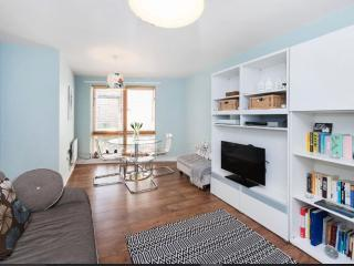 Central and nice 1bed flat in quiet street - London vacation rentals