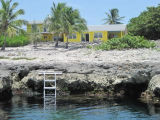 Ocean Front, Spectacular Views - West End vacation rentals