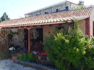 Rustikales kanarisches Haus mit Meeresblick + Pool - Brena Alta vacation rentals