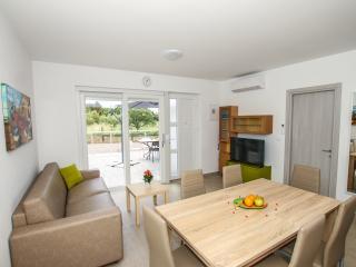Apartment with pool Funtana (A1) - Funtana vacation rentals